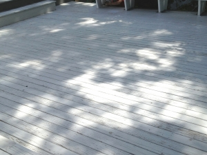 TAMMY_DECK STAINING_KENDAL_CHACOALBefore17